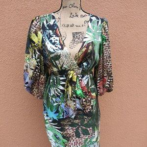 Cache Dress 6 EUC